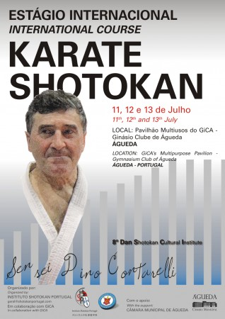 Estagio_karate