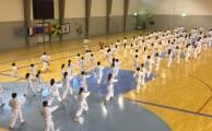 Karaté | GiCA recebe XIII Estágio Internacional Karaté Shotokan