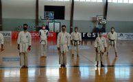 Karaté Shotokan - Graduações